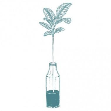 Rubber Stamp MYA 0017 vase